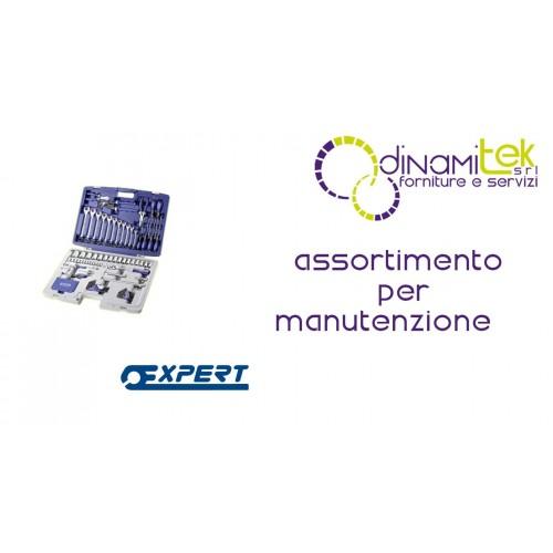E034806 ASSORTIMENTO PER MANUTENZIONE PASTORINO EXPERT 124 PEZZI Dinamitek 1